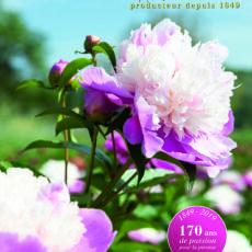 Catalogue -0