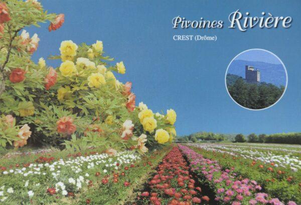 Carte Postale 'Panoramique'-0