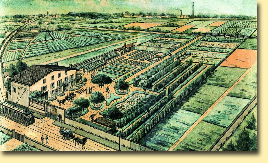 L' Etablissement RIVIERE à Caluire en 1900